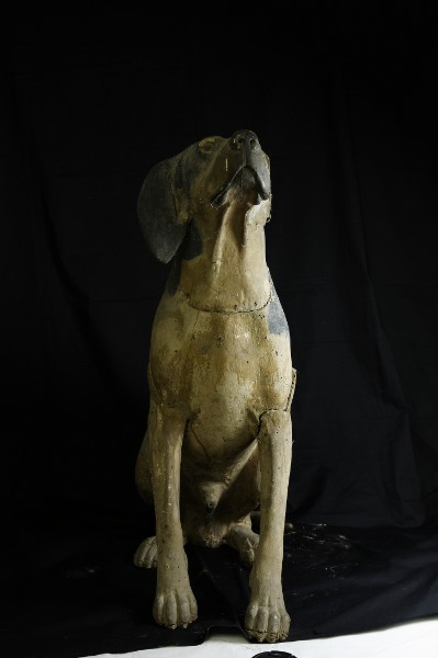 Scultura lignea policroma raffigurante un cane da caccia seduto (sec. XVIII); fase del processo di restauro - Polychrome wooden sculpture portraying a hunting dog sitting (XVIII century) step of the restoration process